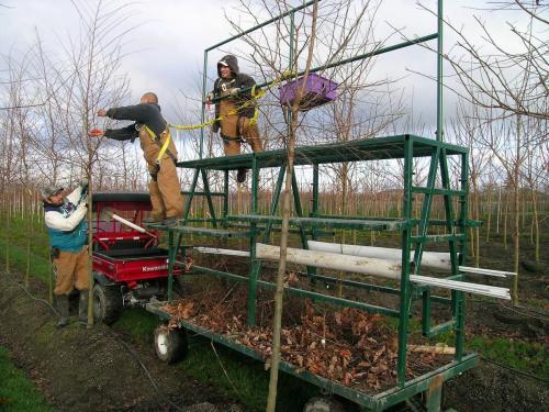 pruningcart